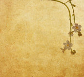 Flower paper textures. Stock Photography