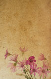 Flower paper textures. Royalty Free Stock Image
