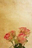 Flower paper textures. Stock Photo