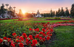 Flower Paradise at ENEA. Many colorful flowers in the Exhibition of Economic Achievements in Moscow Stock Photography