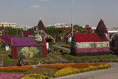 Flower Park in Dubai (Dubai Miracle Garden). United Arab Emirates. Stock Photo