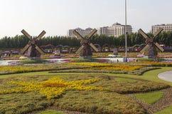 Flower Park in Dubai (Dubai Miracle Garden). United Arab Emirates. Stock Image