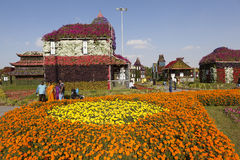 Flower Park in Dubai (Dubai Miracle Garden). United Arab Emirates. Stock Photos