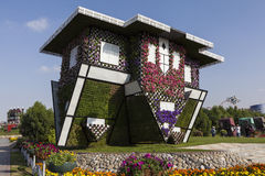 Flower Park in Dubai (Dubai Miracle Garden). United Arab Emirates. royalty free stock photography