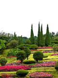Flower park on the hill Royalty Free Stock Photography