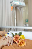 Flower and patient Royalty Free Stock Image