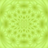A flower pattern Stock Photography