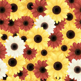 Flower pattern. Vector seamless background with flowers Royalty Free Stock Photo