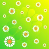 Flower pattern_36 Royalty Free Stock Images