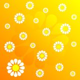 Flower pattern_37 royalty free stock photos