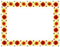 Flower pattern as frame Royalty Free Stock Image