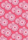 Flower Pattern Background Set Stock Image