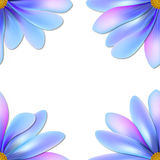 Flower pattern. Pattern with blue flower on white background Royalty Free Stock Image