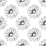 Flower pattern. Camomile drawing. Vector Stock Photos
