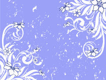 Flower pattern decoratively Royalty Free Stock Photography