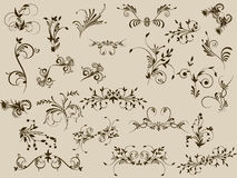 Flower pattern decoratively. Flower monogram decoratively romantically abstraction illustration Royalty Free Stock Images