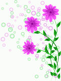 Flower pattern decoratively. Romantically abstraction illustration Stock Photo