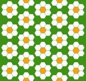 Flower pattern. Geomety hexagon design Stock Photo