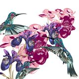 Flower pattern with hummingbirds, orchids and irises Royalty Free Stock Photos