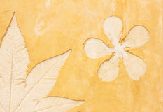 Flower pattern on orange wall background Royalty Free Stock Photography