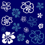 Flower pattern over blue Stock Images
