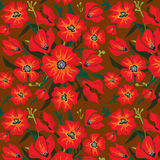 Flower Pattern with poppies Stock Photos