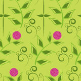 Flower pattern seamless Royalty Free Stock Photos