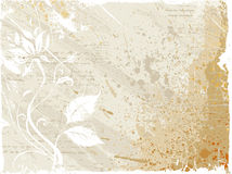 Flower pattern and stain background Stock Images