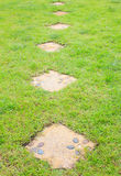 Flower Pattern on Stone path into the green grass. Garden royalty free stock images