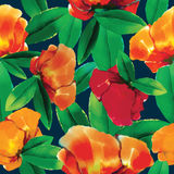 Flower pattern. For using in different spheres Stock Images