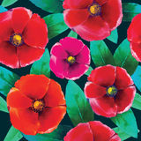 Flower pattern. For using in different spheres Royalty Free Stock Photography