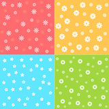 Flower patterns Stock Images