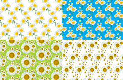 Flower patterns background Royalty Free Stock Images