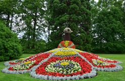 Flower Peacock. A sculpture of a peacock made of flowers in mainau island gardens Royalty Free Stock Photography