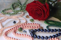 Flower and pearl stock image