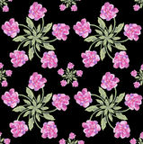 Flower Peony blossoms on a  black background colorful watercolor seamless wallpaper. Art deco Flower peony blossoms   growing fresh and watercolor painting Stock Photo