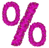 Flower percent sign. Floral element of colorful alphabet made from orchid flowers royalty free stock images