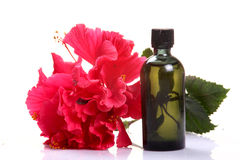 Flower perfume Royalty Free Stock Image
