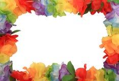 Flower petal frame Stock Photography