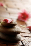 Flower petal resting on rounded pebbles. Stock Photography