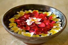 Flower petals in a bowl at a spa Royalty Free Stock Photography