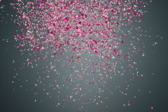 Flower petals on dark background Stock Images