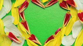 Flower petals flying heart shaped stock video