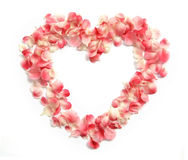 Flower Petals in a heart shape Stock Photo