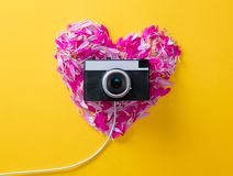 Flower petals in heart shape and camera. Pink and purple flower petals in heart shape and camera on yellow background Stock Photos