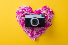 Flower petals in heart shape and camera. Pink and purple flower petals in heart shape and camera on yellow background Royalty Free Stock Photos