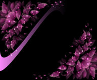 Flower petals pink with a glow. On a dark background Royalty Free Stock Photos