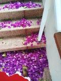 Flower petals steps women foot tattoo. Royal Beauty Love royalty free stock photos