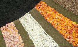 Flower petals Stock Photography