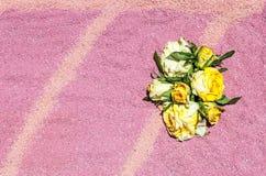 Flower petals Royalty Free Stock Photos